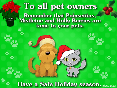 Holiday Pet Safe